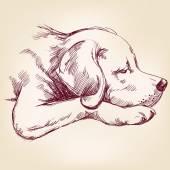 Dog hand drawn vector llustration — Stock Vector