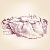 Baby Jesus in the  manger hand drawn vector llustration — Stock Vector