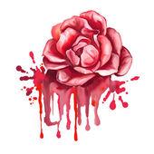 Wektor rose ręka ilustracja malowane — Wektor stockowy