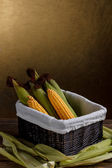 Raw corn cobs — Stock Photo