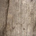 Wood background — Stock Photo #57533979