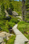 Wooden tourist path — Stock Photo