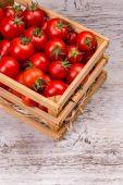 Ripe cherry tomatoes — Stock Photo
