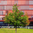 Red office building and green tree — Stock Photo #53843543