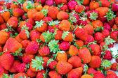 Fresh strawberries for sale — Stock Photo