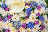Colourful flower bouqet — Stock Photo