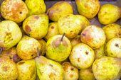 Yellow ripe pears at a market — Stockfoto