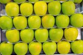 Green apples for sale — Stock Photo