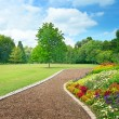 Multicolored flowerbed on a glade — Stockfoto #55831727