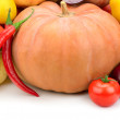 Collection pumpkin — Stock Photo #61446033