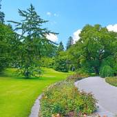 Footpath in a summer park — Stock Photo