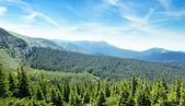 Góry pokryte drzewami i błękitne niebo — Zdjęcie stockowe