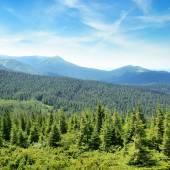 Las montañas cubiertas de árboles y un cielo azul — Foto de Stock