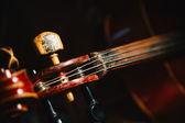 Fretboard and tuning peg of old shabby cello on black — Stock Photo