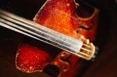 Fretboard with string of old shabby cello  — Stock Photo