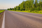Country road near a forest in evening time — Stock Photo