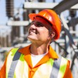 Mature electrician in electrical substation — Stock Photo #57224669