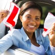 Driver tearing up her L sign — Stock Photo #57416971