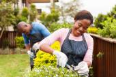 Woman gardening with h husband — Stock Photo