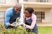 Couple gardening at home — Stock Photo