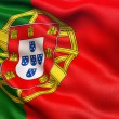 Portugal flag — Stock Photo #70574927