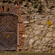 Old fortress door  — Stock Photo #56152813