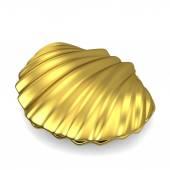 Sea shell — Stock Photo