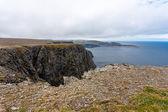 Panorama di norvegia. — Foto Stock
