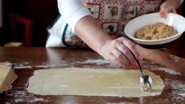 Homemade Agnolotti Preparation — Stock Video