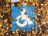 Handicapped Accessible Sign on the Ground — Stock Photo