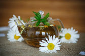ромашковый чай — Стоковое фото