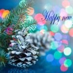Happy new year ! — Stock Photo #54748291