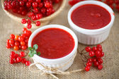 Viburnum jam — Stock Photo
