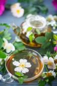Herbata ziołowa — Zdjęcie stockowe