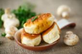 Fried patties with mushrooms — 图库照片