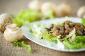 Warm salad with mushrooms — Stock Photo