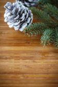 Christmas tree with cones  — Stock Photo