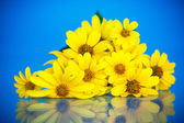 Bouquet of yellow daisies  — Stock Photo