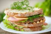 Sandwich with sausage, cheese and herbs — Stock Photo