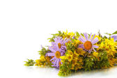 Summer bouquet of daisies and loosestrife — Stock Photo