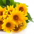 Bunch of yellow daisy flowers — Stock Photo #64989745