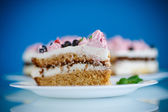 Cake with currants — Stock Photo