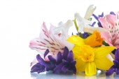 Beautiful bouquet of spring flowers  — Stock Photo