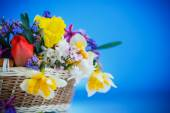 Beautiful bouquet of spring flowers, — Stock Photo