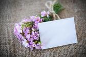 Ramo de flores de primavera — Foto de Stock