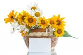 Bouquet of yellow and white daisies — Stock Photo