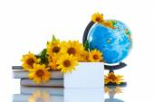Globe with books and flowers — Stock Photo