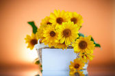 Bunch of yellow daisy flowers — Stock Photo