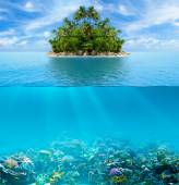 Underwater coral reef seabed and water surface with tropical isl — Stockfoto