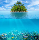 Underwater coral reef seabed and water surface with tropical isl — Foto Stock